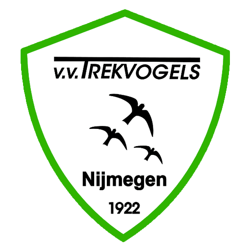 Theo Jansen stopt als voorzitter.